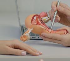 Urogynaecology