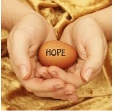 Egg Donation - IVF Treatment in India