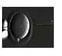 Intracytoplasmic Sperm Injection (ICSI)